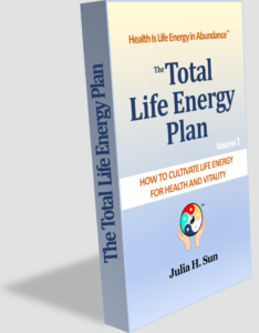 "The eBook ""Total Life Energy Plan"""